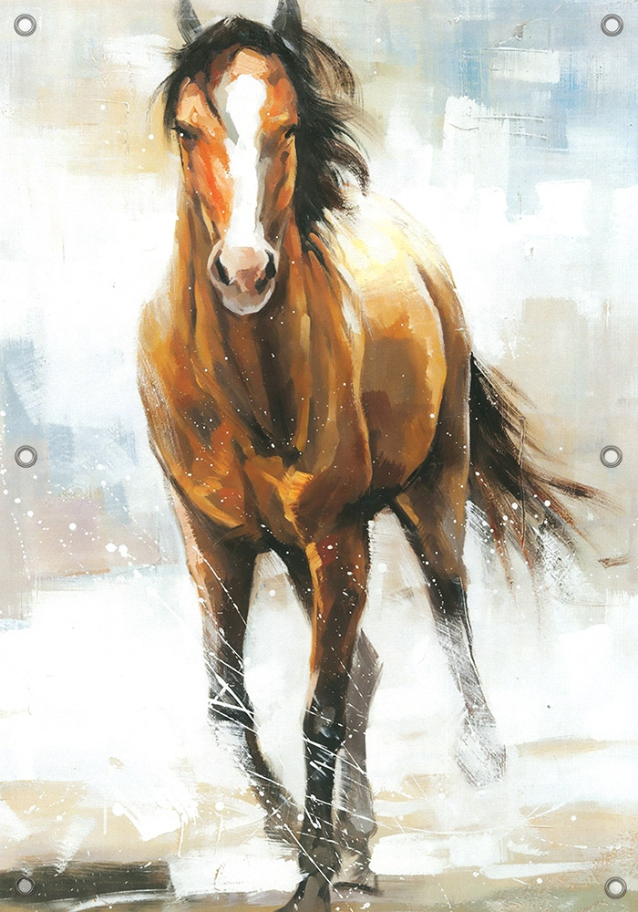 Tuinposter paard 70x100