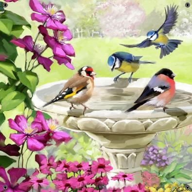 Tuinposter vogels bij drinkplateau 80x80