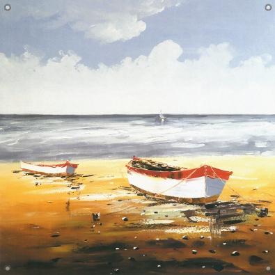 Tuinposter boot aan strand 80x80