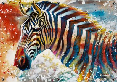 Tuinposter zebra 70x100
