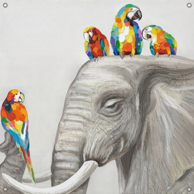 Tuinposter olifant met papegaai 80x80