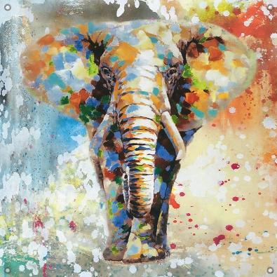 Tuinposter olifant 80x80
