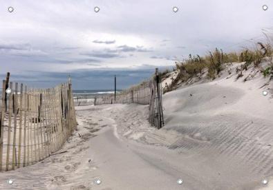 Tuinposter strand en duinen 110x155 GROOT