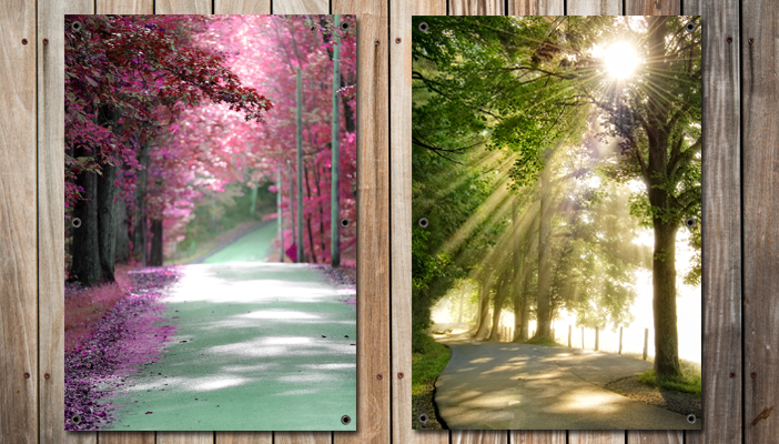 Natuur posters